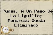<b>Pumas</b>, A Un Paso De La Liguilla; Monarcas Queda Eliminado