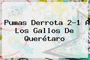<b>Pumas</b> Derrota 2-1 A Los Gallos De <b>Querétaro</b>