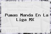Pumas Manda En La <b>Liga MX</b>