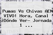 Pumas Vs Chivas ¡EN VIVO! Hora, Canal ¿Dónde Ver? <b>Jornada 1</b> ...