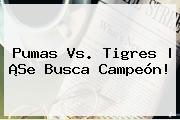 <b>Pumas Vs. Tigres</b> | ¡Se Busca Campeón!