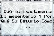 Qué Es Exactamente El <b>mesenterio</b> Y Por Qué Su Estudio Como ...