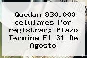 Quedan 830.000 <b>celulares</b> Por <b>registrar</b>; Plazo Termina El 31 De Agosto