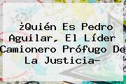 ¿Quién Es <b>Pedro Aguilar</b>, El Líder Camionero Prófugo De La Justicia?