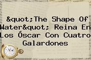 &quot;<b>The Shape Of Water</b>&quot; Reina En Los Óscar Con Cuatro Galardones