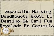 &quot;<b>The Walking Dead</b>&quot; 8x09: El Destino De Carl Fue Revelado En Capítulo