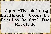 &quot;<b>The Walking Dead</b>&quot; 8x09: El Destino De Carl Fue Revelado