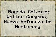 Rayado Celeste; <b>Walter Gargano</b>, Nuevo Refuerzo De Monterrey