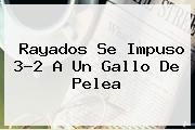 <b>Rayados</b> Se Impuso 3-2 A Un Gallo De Pelea