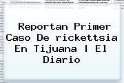 Reportan Primer Caso De <b>rickettsia</b> En Tijuana | El Diario