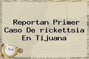 Reportan Primer Caso De <b>rickettsia</b> En Tijuana