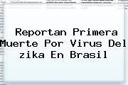 Reportan Primera Muerte Por Virus Del <b>zika</b> En Brasil