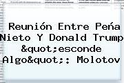 Reunión Entre <b>Peña Nieto</b> Y <b>Donald Trump</b> &quot;esconde Algo&quot;: Molotov