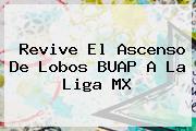Revive El Ascenso De <b>Lobos</b> BUAP A La Liga MX