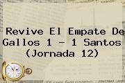 Revive El Empate De Gallos 1 - 1 <b>Santos</b> (Jornada 12)