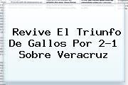 Revive El Triunfo De Gallos Por 2-1 Sobre <b>Veracruz</b>