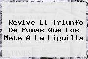 Revive El Triunfo De <b>Pumas</b> Que Los Mete A La Liguilla