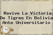 Revive La Victoria De <b>Tigres</b> En Bolivia Ante Universitario