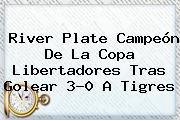 <b>River Plate</b> Campeón De La Copa Libertadores Tras Golear 3-0 A Tigres