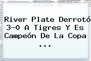 <b>River Plate</b> Derrotó 3-0 A Tigres Y Es Campeón De La Copa <b>...</b>