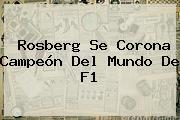 Rosberg Se Corona Campeón Del Mundo De <b>F1</b>