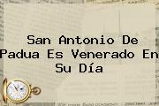 <b>San Antonio De Padua</b> Es Venerado En Su Día
