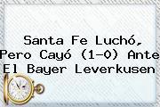 <b>Santa Fe</b> Luchó, Pero Cayó (1-0) Ante El Bayer Leverkusen