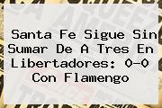 <b>Santa Fe</b> Sigue Sin Sumar De A Tres En Libertadores: 0-0 Con <b>Flamengo</b>