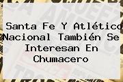Santa Fe Y <b>Atlético Nacional</b> También Se Interesan En Chumacero
