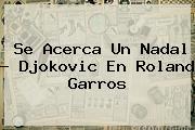 Se Acerca Un Nadal - Djokovic En <b>Roland Garros</b>