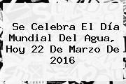 Se Celebra El <b>Día</b> Mundial Del <b>Agua</b>, Hoy 22 De Marzo De 2016