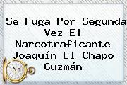Se Fuga Por Segunda Vez El Narcotraficante Joaquín El <b>Chapo Guzmán</b>