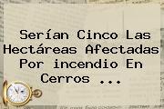 Serían Cinco Las Hectáreas Afectadas Por <b>incendio</b> En Cerros <b>...</b>