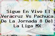 Sigue En Vivo El Veracruz Vs Pachuca De La Jornada 8 Del La <b>Liga MX</b>