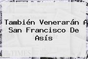 También Venerarán A <b>San Francisco De Asís</b>
