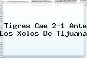 <b>Tigres</b> Cae 2-1 Ante Los Xolos De <b>Tijuana</b>