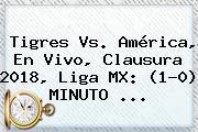 Tigres Vs. América, En Vivo, Clausura <b>2018</b>, <b>Liga MX</b>: (1-0) MINUTO ...