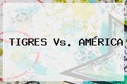 <b>TIGRES Vs. AMÉRICA</b>