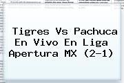 <b>Tigres Vs Pachuca</b> En Vivo En Liga Apertura MX (2-1)