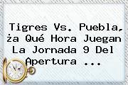 <b>Tigres Vs. Puebla</b>, ¿a Qué Hora Juegan La Jornada 9 Del Apertura ...