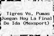 <b>Tigres Vs. Pumas</b> Juegan Hoy La Final De Ida (Mexsport)