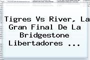 <b>Tigres Vs</b> River, La Gran Final De La Bridgestone Libertadores