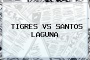 <b>TIGRES VS SANTOS</b> LAGUNA