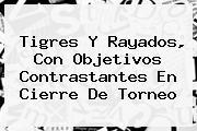 Tigres Y <b>Rayados</b>, Con Objetivos Contrastantes En Cierre De Torneo