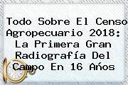 Todo Sobre El <b>Censo</b> Agropecuario <b>2018</b>: La Primera Gran Radiografía Del Campo En 16 Años