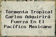 Tormenta Tropical <b>Carlos</b> Adquirirá Fuerza En El Pacífico Mexicano