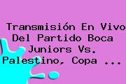 Transmisión En Vivo Del Partido Boca Juniors Vs. Palestino, <b>Copa</b> <b>...</b>