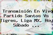 Transmisión En Vivo Partido <b>Santos Vs Tigres</b>, Liga MX, Hoy Sábado <b>...</b>