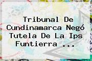 Tribunal De Cundinamarca Negó Tutela De La Ips Funtierra ...