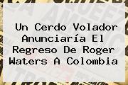 Un Cerdo Volador Anunciaría El Regreso De <b>Roger Waters</b> A Colombia
